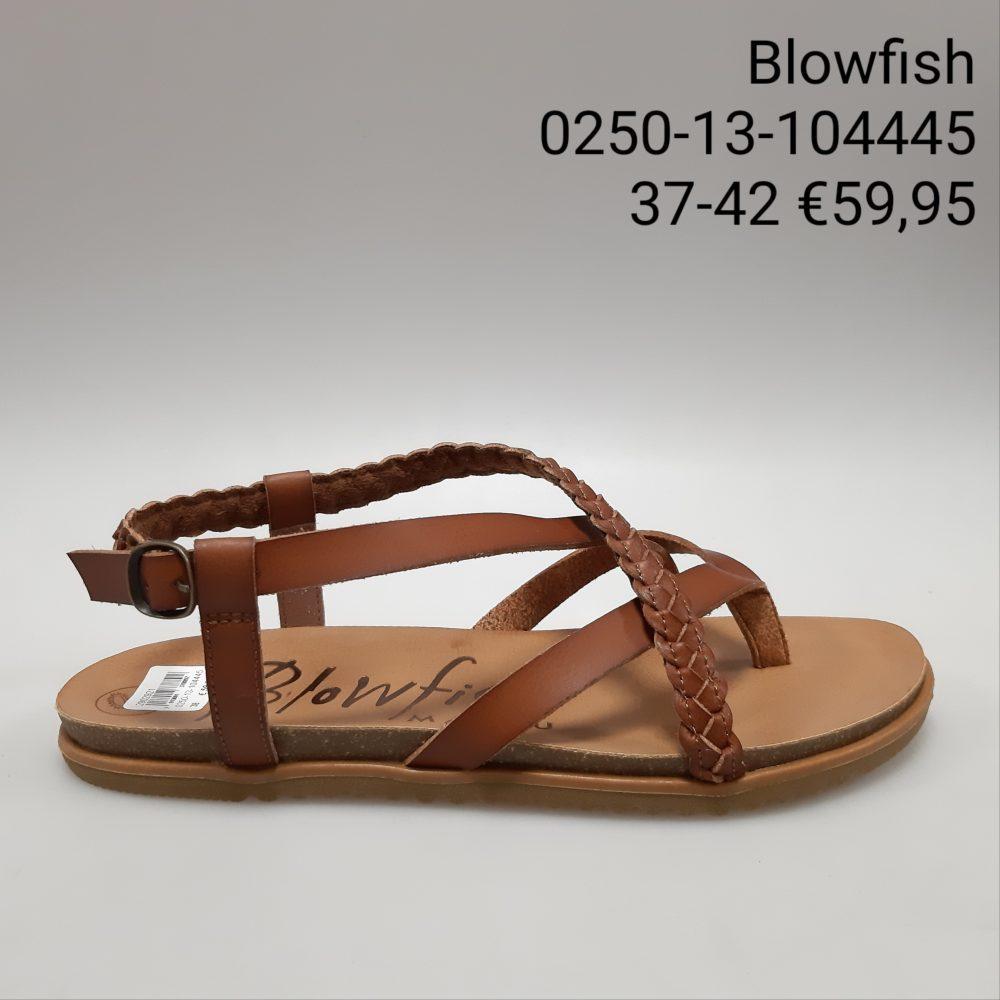 Dames Schoenen 135