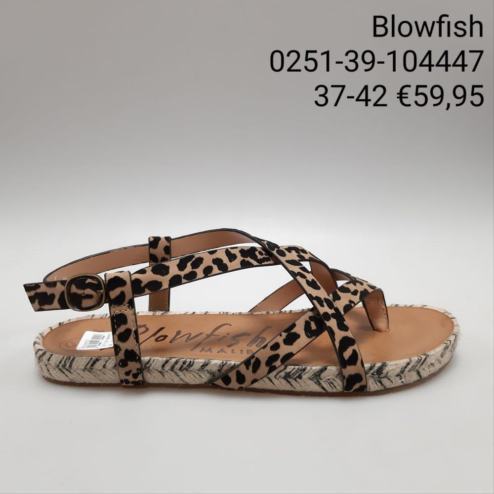 Dames Schoenen 134